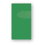 P155 / Světle zelená lesklá / PROMO