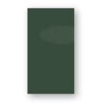 P159 / Tmavě zelená lesklá / PROMO
