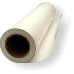 Termální papír pro QS200